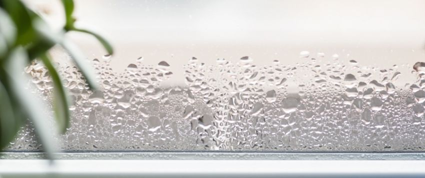 Condensation on window